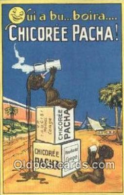 Chicoree Pacha
