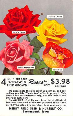 adv016173 - Advertising Post Card