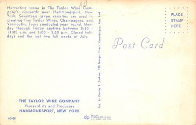 adv018039 - Wine and Liquor Advertising Old Vintage Antique Post Card  back