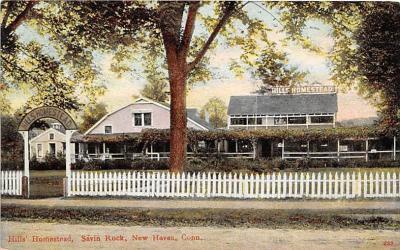 amp007037 - Savin Rock, New Haven, Connecticut, CT, USA, USA Postcard
