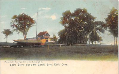 amp007134 - Savin Rock, Connecticut, CT, USA Postcard