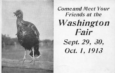 amp047001 - Washington, WA, USA Postcard