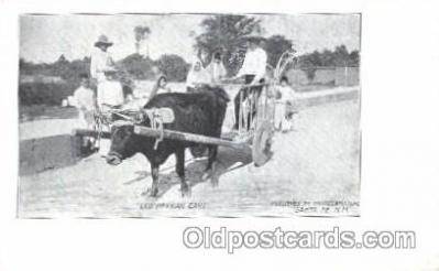 Buffalo, Old Mexican cart