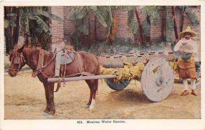 Mexican Water Carrier