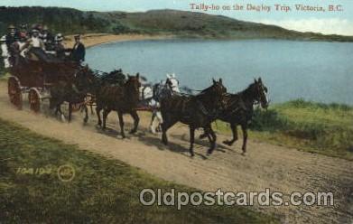 and000090 - Tally-ho on the Dagley Trip, Victoria, B.C. Animal Drawn Postcard Post Card