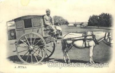 and000095 - A Jutka Animal Drawn Postcard Post Card