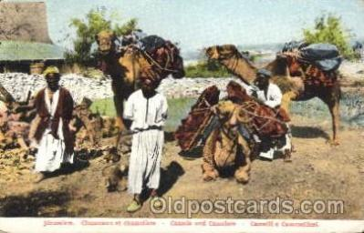Camels and Camelers