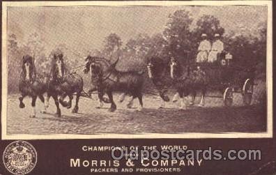 Supreme brand, Morris & company