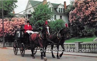 Carriage & Lilacs