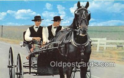 Amish Bous Riding, Courting Buggy