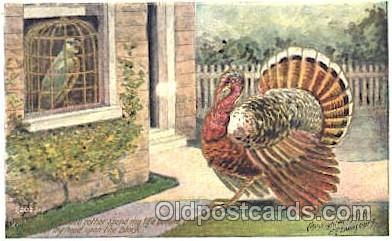 ani001037 - Animal Postcard Post Card