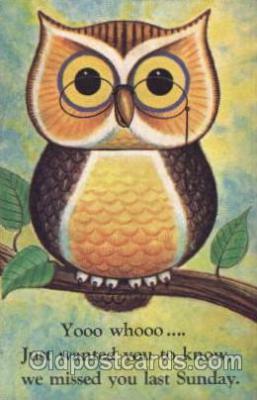 ani001121 - Owl Animal Postcard Post Card