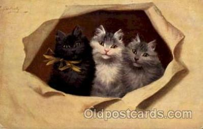 Series 3067 Artist Sperlich Cat, Cats Post Card Post Card
