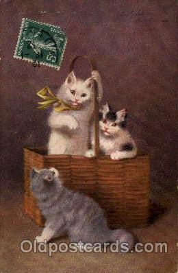 Series 3047 Artist Sperlich Cat, Cats Post Card Post Card