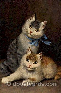 Series 768 Artist Sperlich Cat, Cats Post Card Post Card
