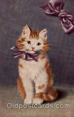 Series 242 Artist Sperlich Cat, Cats Post Card Post Card