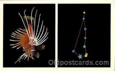 ast001014 - Piscis Austrinus The Southern Fish Astrology Postcard Post Card