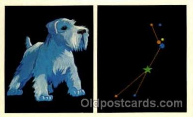 ast001016 - Canis Minor The Small Dog Astrology Postcard Post Card