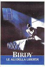 act500513 - Birdy Movie Poster Postcard