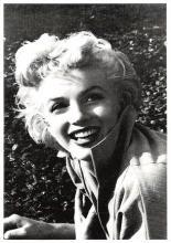 act510183 - Marilyn Monroe Movie Poster Postcard