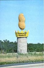 Georgia Peanuts, Ashburn, GA, USA