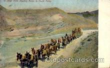 adv001684 - Mule Team Hauling Borax Advertising Post Card Post Card