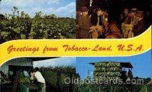 adv001712 - Tobacco Land Advertising Post Card Post Card
