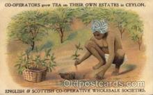 adv001737 - English & Scottish Co-Operative Wholesale Societies Advertising Post Card Post Card