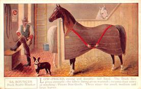 adv019003 - Horse Blanket Advertising Old Vintage Antique Post Card