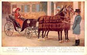 adv019015 - Horse Blanket Advertising Old Vintage Antique Post Card