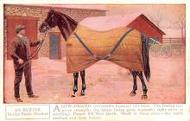 adv019037 - Horse Blanket Advertising Old Vintage Antique Post Card