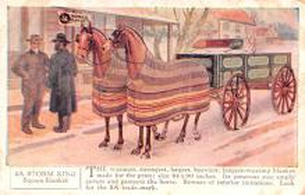 adv019055 - Horse Blanket Advertising Old Vintage Antique Post Card