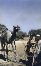 afr100051 - Abeche African Life Postcard Post Card