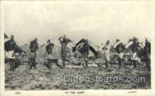 afr100454 - Elephant Tusk African Life Postcard Post Card