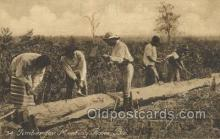 afr100487 - Timber for meeting room, Bie African Life Postcard Post Card