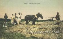 afr100517 - Tripoli African Life Postcard Post Card