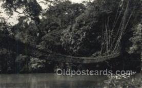 afr100551 - Pont de Lianes African Life Postcard Post Card