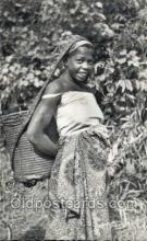 afr100576 - Recolte d'Arachides African Life Postcard Post Card