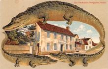 agb001008 - Alligator Border Post Card Old Vintage Antique