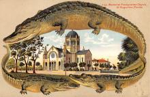 agb001010 - Alligator Border Post Card Old Vintage Antique