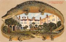 agb001014 - Alligator Border Post Card Old Vintage Antique