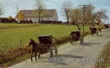 amh001022 - Mennonite Carriages Amish Post Card, Post Card
