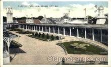 amp001005 - Electric Park Kansas City, MO USA Amusement Park Postcard Post Card
