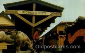 amp001162 - Pioneer City, FL USA Amusement Park Parks, Postcard Post Card