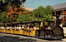 amp001163 - Conch Tour Train Along Poinciana Lined Street, Old Key West, FL USA Amusement Park Parks, Postcard Post Card