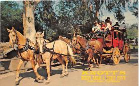 amp005013 - Buena Park, California, CA, USA Postcard