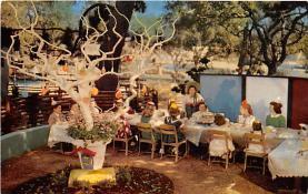 amp005029 - Children's Fairyland, Oakland, California, CA, USA Postcard