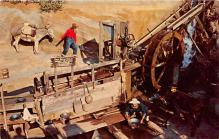 amp005075 - Knott's Berry Farm, Ghost Town, California, CA, USA Postcard