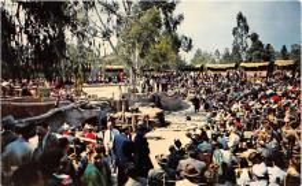 amp005113 - Knott's Berry Farm, Buena Park, California, CA, USA Postcard