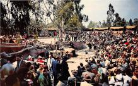 amp005144 - Knott's Berry Farm, Buena Park, California, CA, USA Postcard